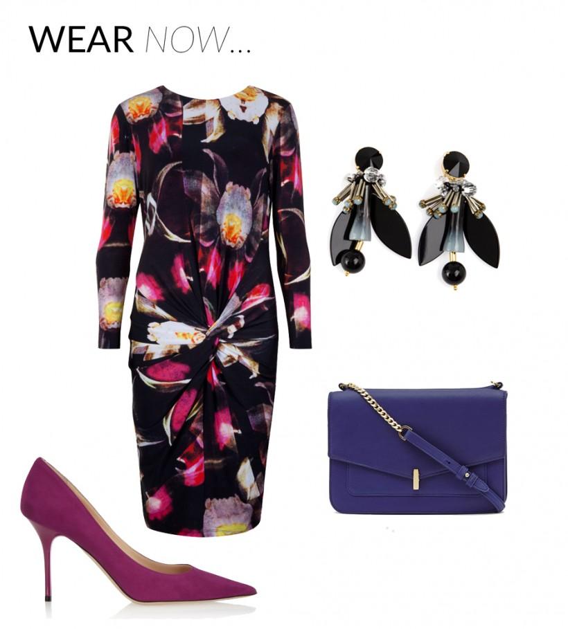 Wear Now/Wear Later – Ted Baker Dress