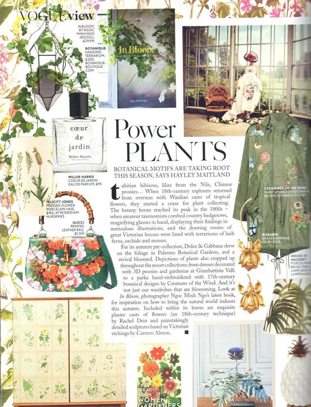 MILLER HARRIS COUER DE JARDIN IN NOVEMBER'S VOGUE